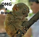 A BRANCH!!!